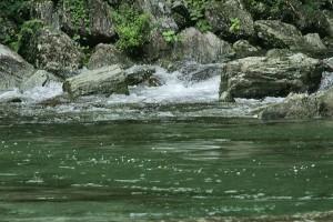高知県仁淀川の上流